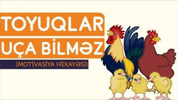 QARTAL BALASİ