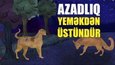 AZADLIQ